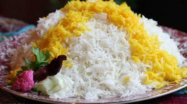 شناخت برنج