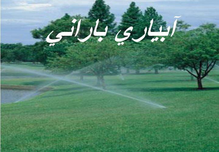 ابیاری بارانی