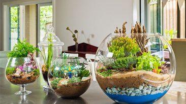 اموزش گیاه داخل شیشه