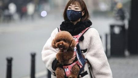 بیشتر عفونت ها در چین است اما سایر کشورها در حال ویروس هستند