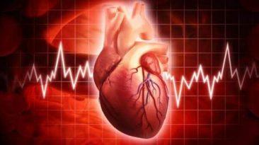 ضربان قلب تعداد دفعات تپش قلب در یک دقیقه است