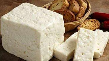 اموزش تهیه پنیر لیقوان